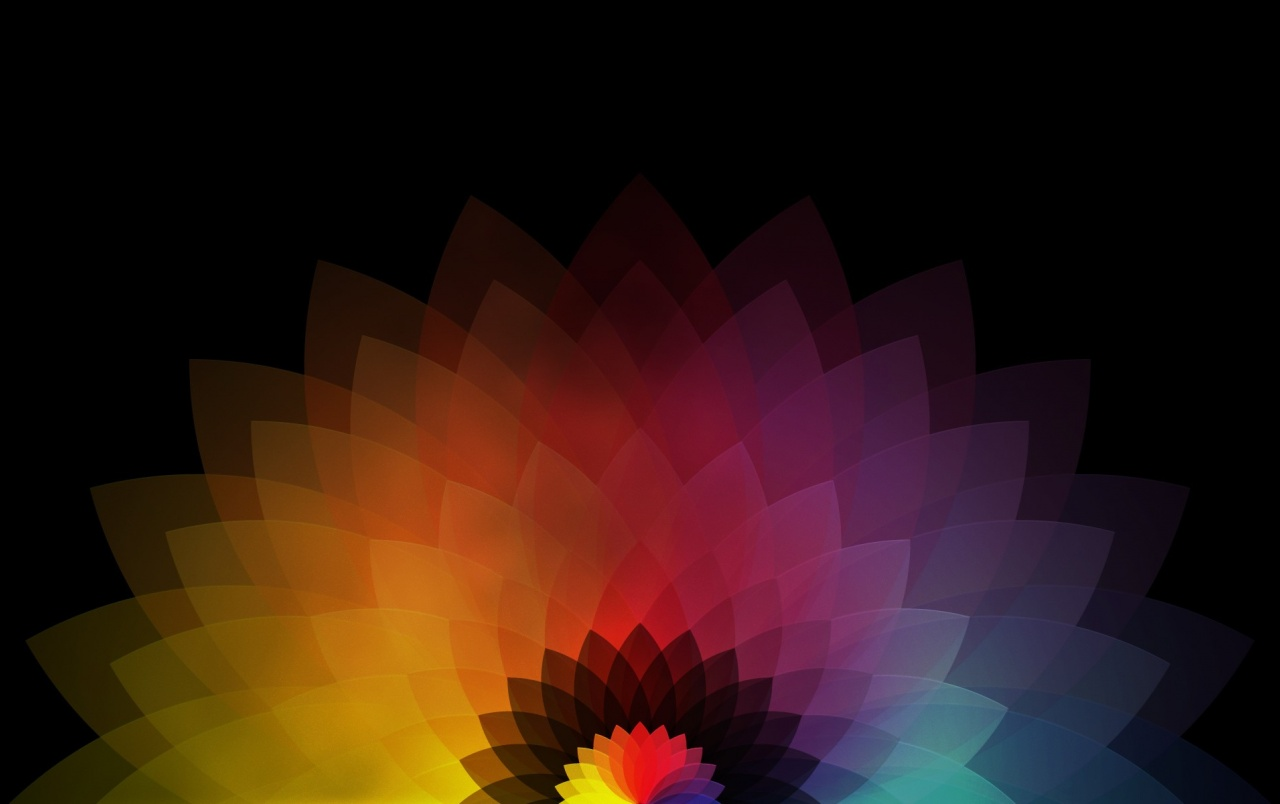 Colored Abstract Flower Wallpapers Colored Abstract Flower