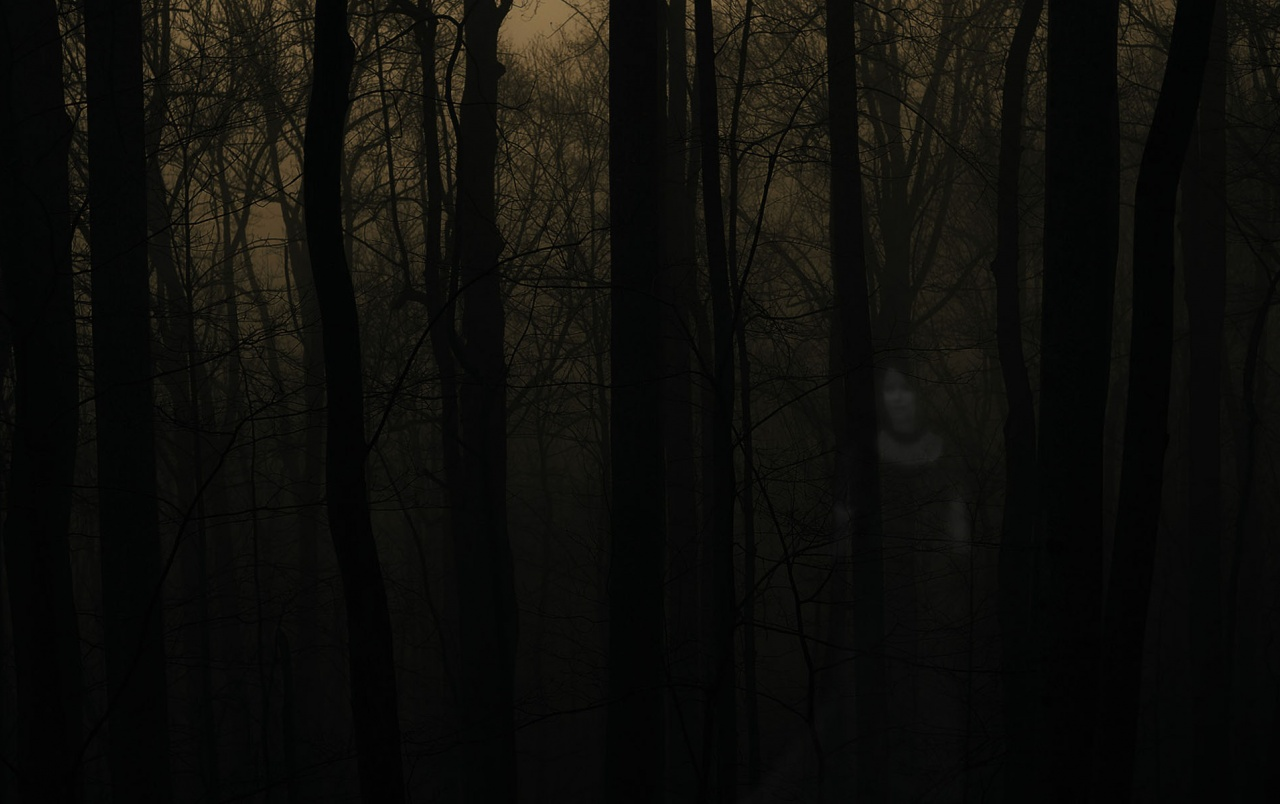 OriginalWide Haunted Forest Wallpapers