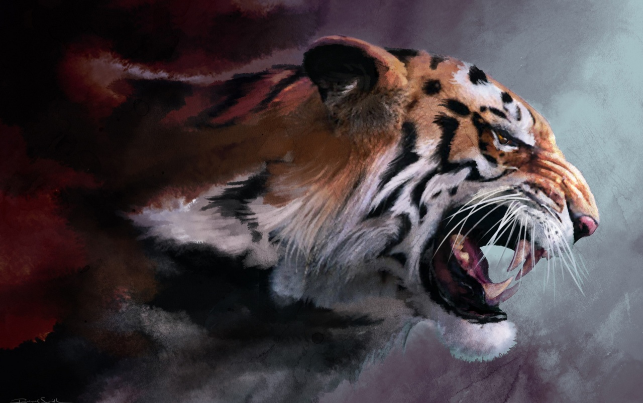 Tigre wallpapers