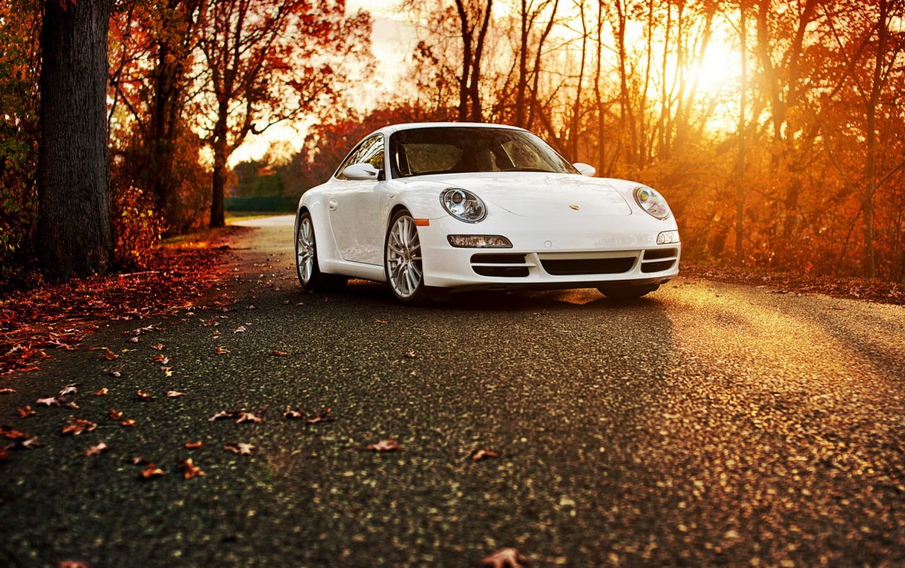 Porsche 911 Autumn wallpapers