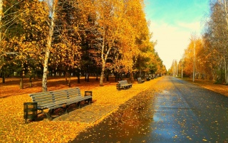 Sunny Autumn Day wallpapers