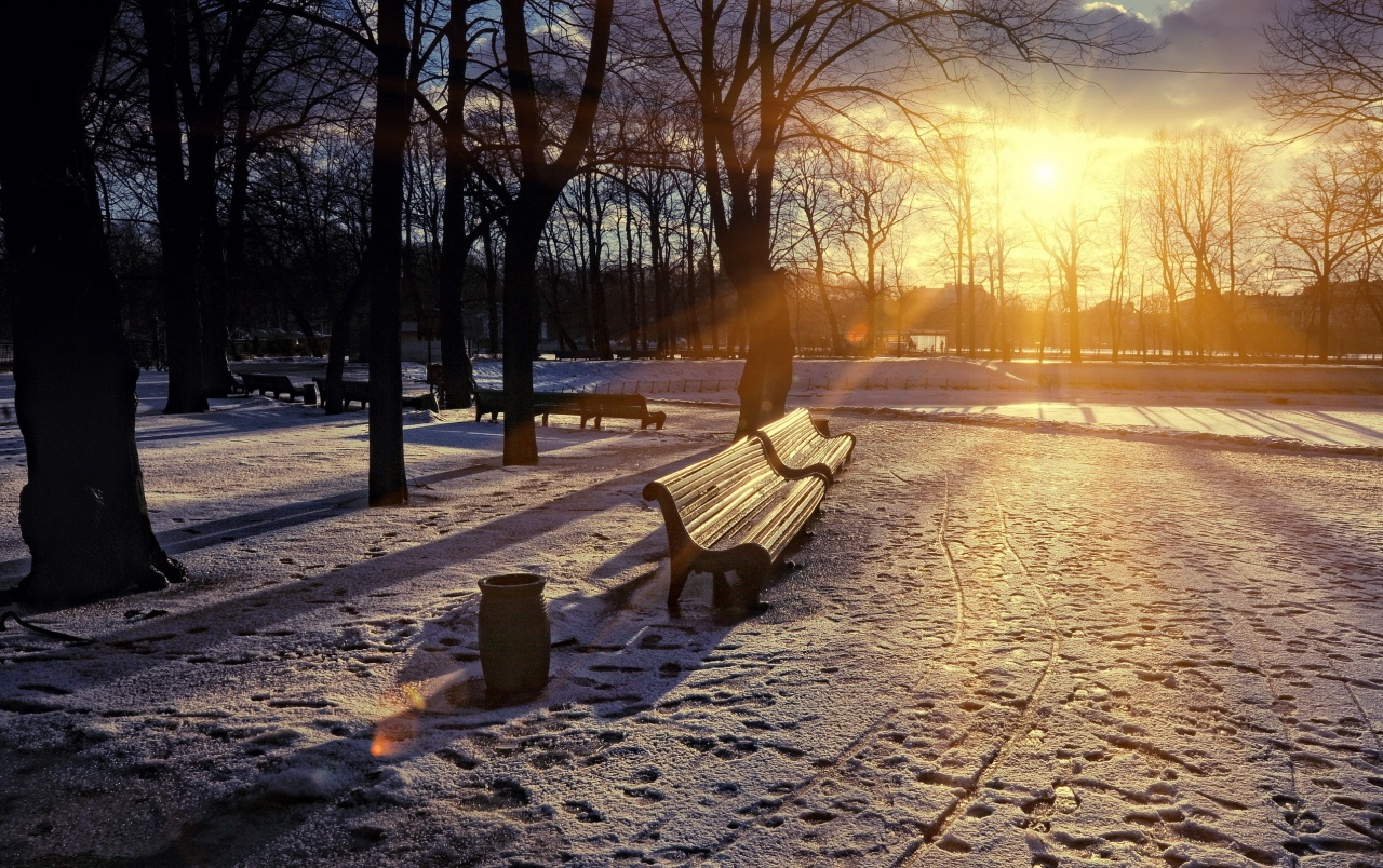 Winter Sunset in the Park wallpapers