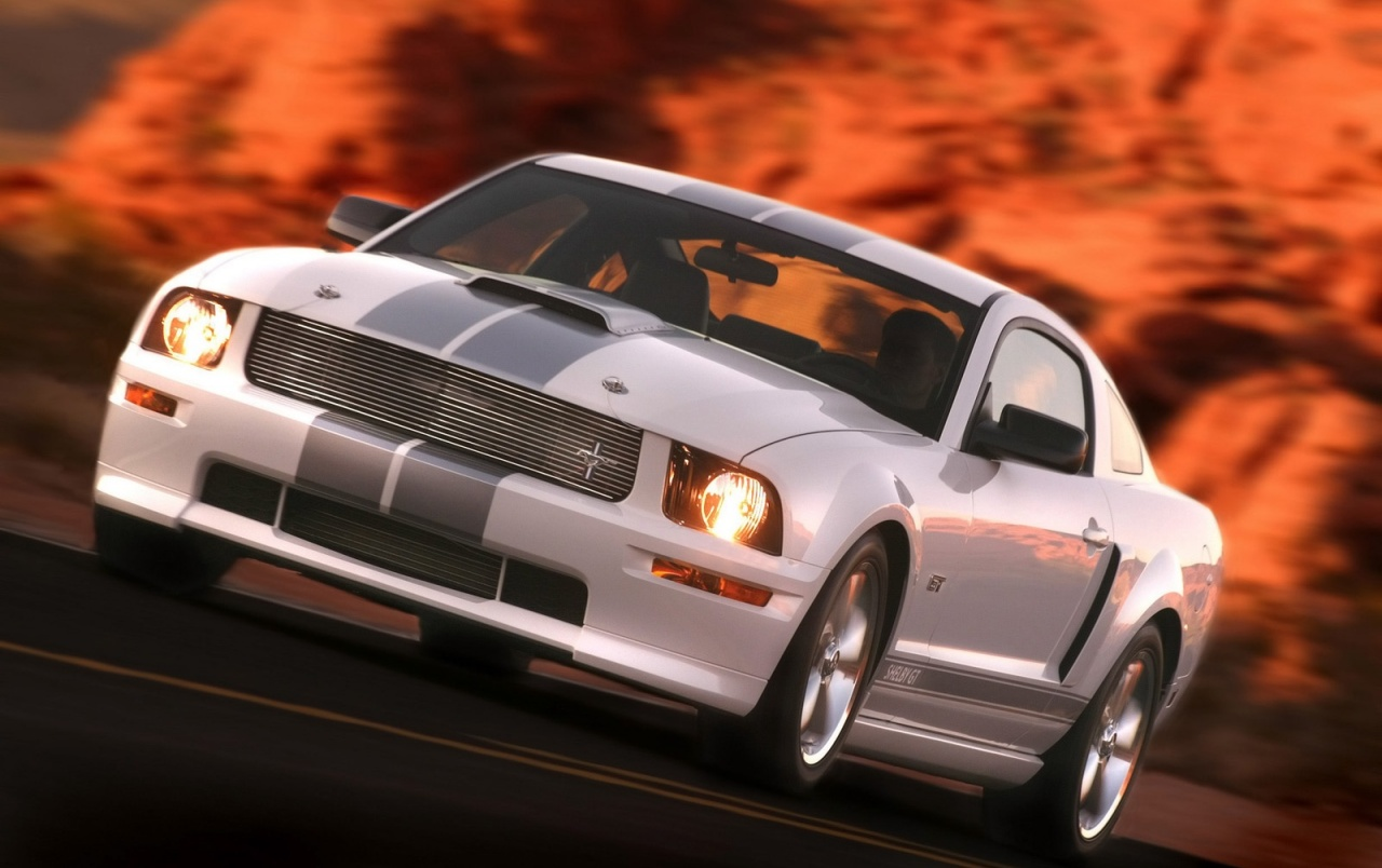 Ford Shelby GT white wallpapers