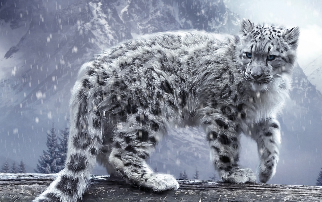 Wide Digital Snow Leopard Wallpapers