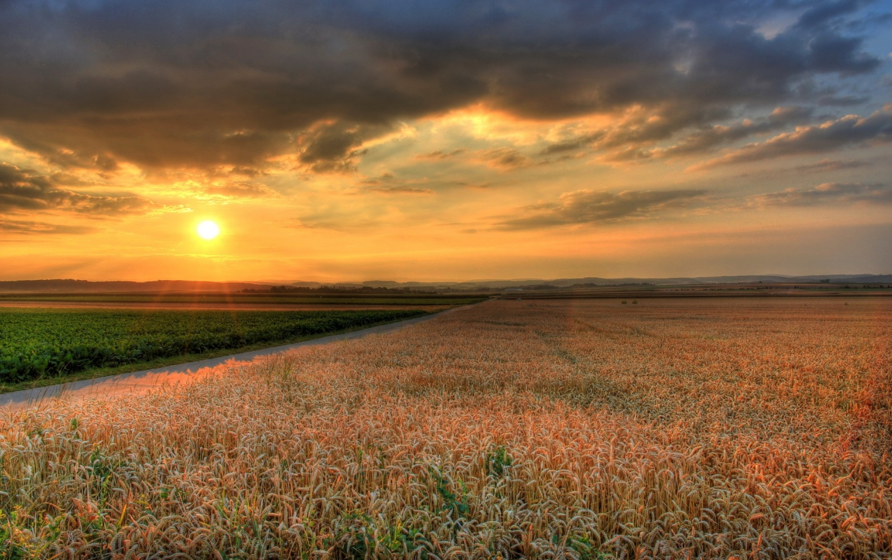 Road Sunset Wallpaper Sunset Road Field wall...