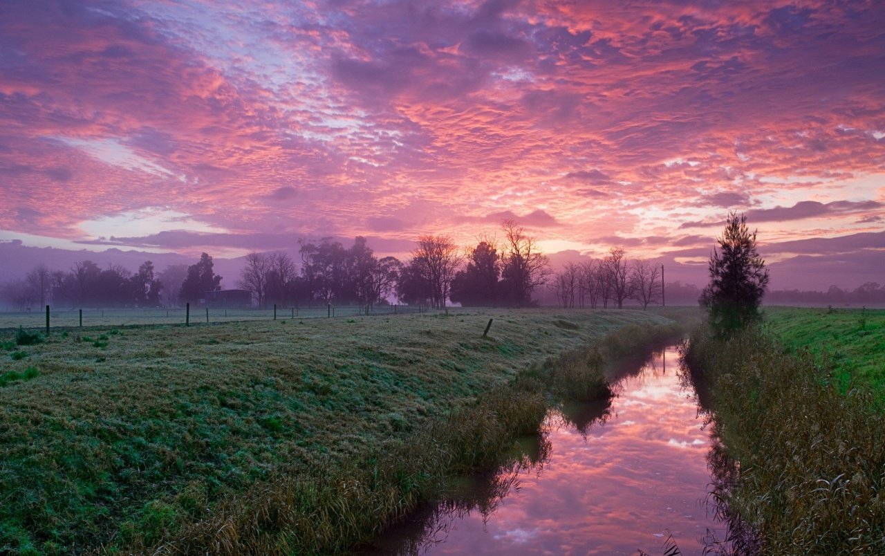 Cold Morning Pink Sky Wallpapers
