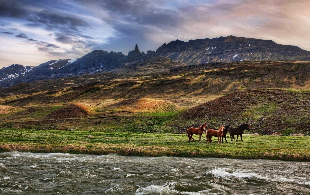 Mountains Fields Horses River wallpapers