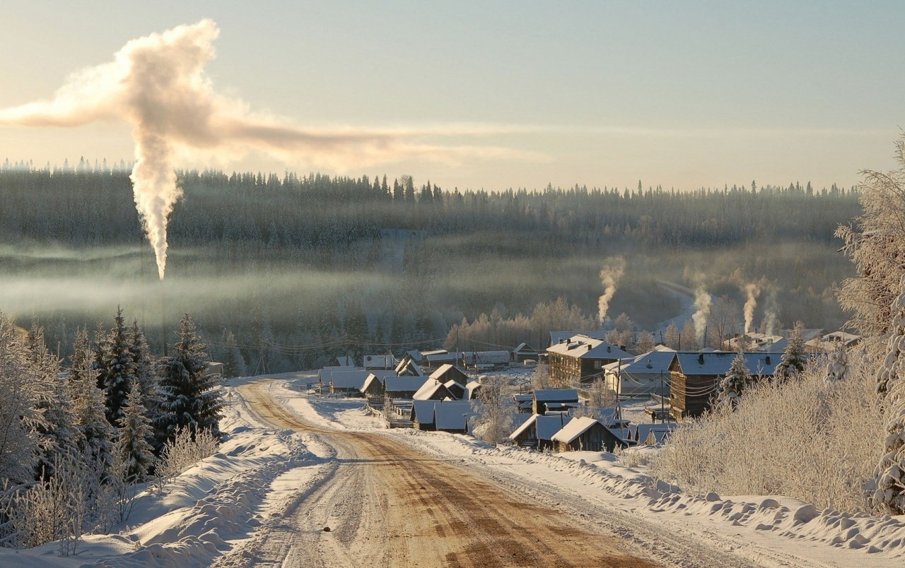 Winter Smoke City Road Trees wallpapers