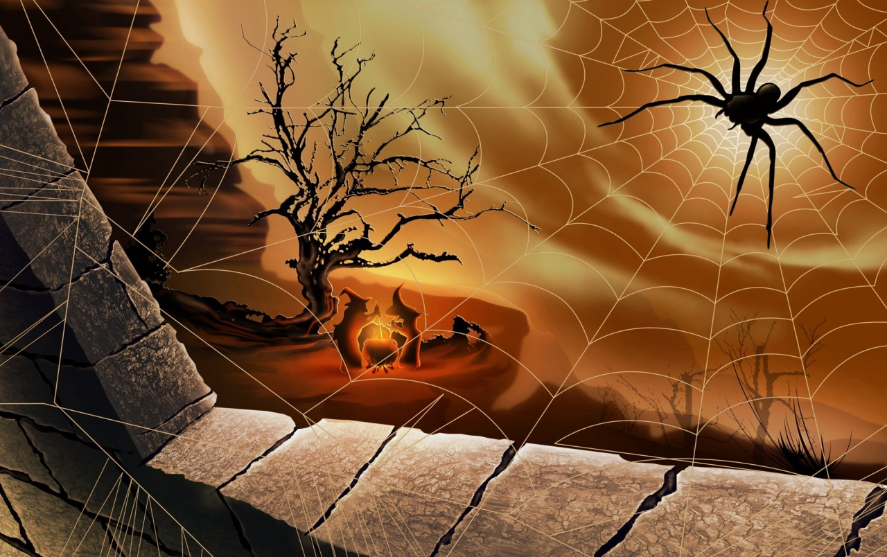 Pumpkins and Spider Webs wallpapers