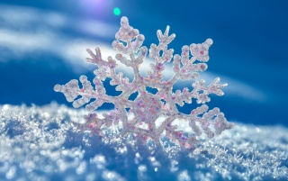 Beautiful Snowflake wallpapers