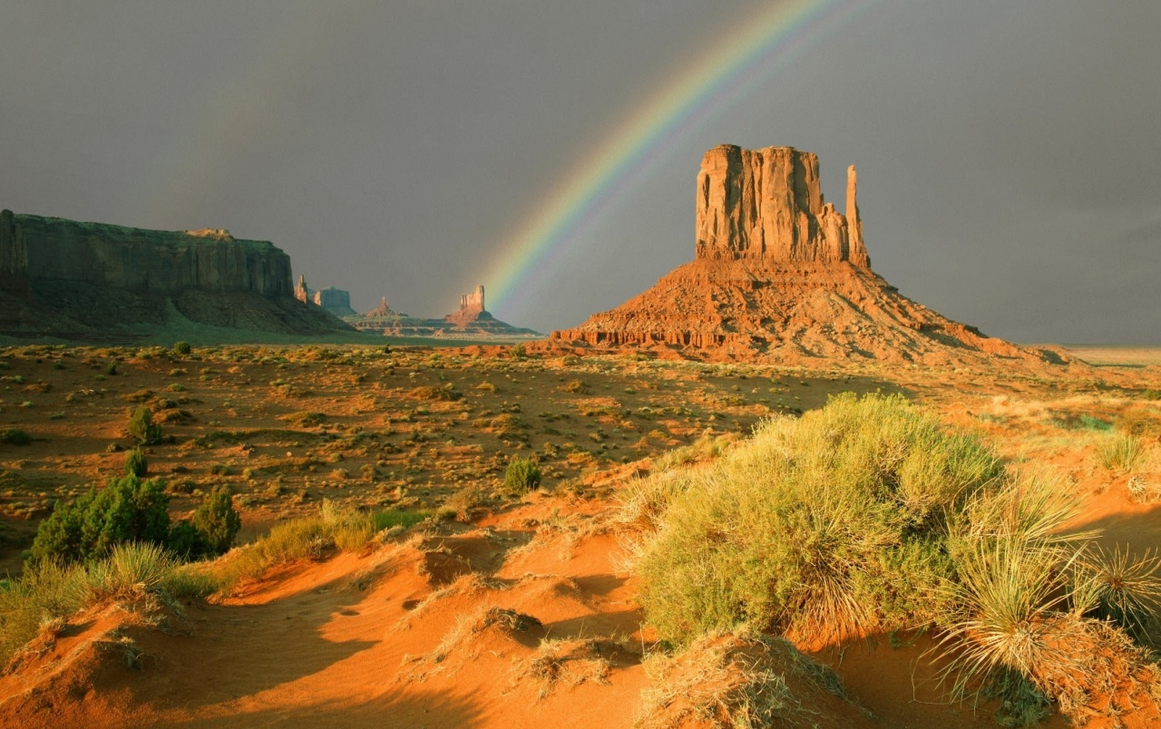 Texas Desert Rainbow & Plants wallpapers