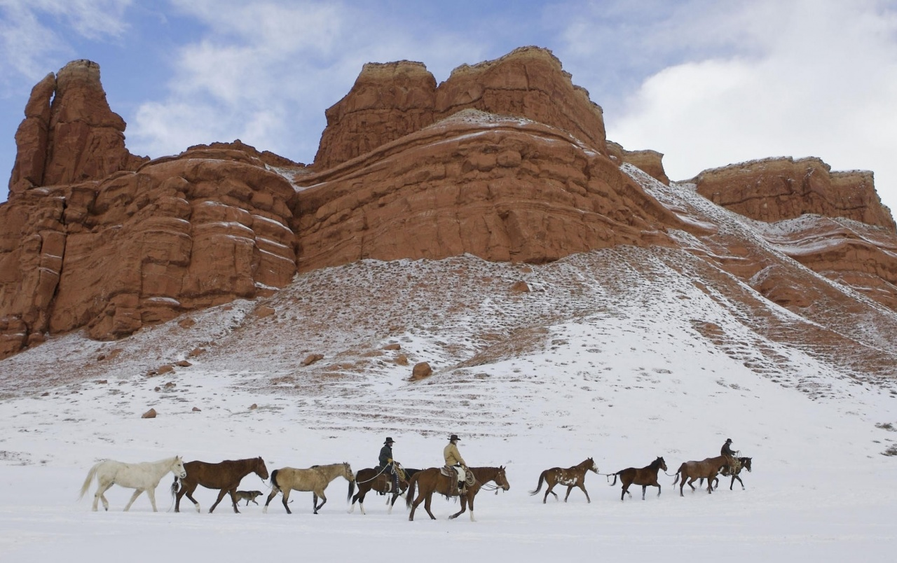 wyoming snow cowboys horses wallpapers wyoming snow
