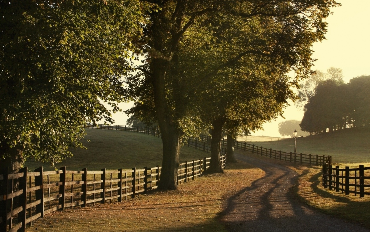 Trees Fences Field Path Rural Wallpapers Trees Fences