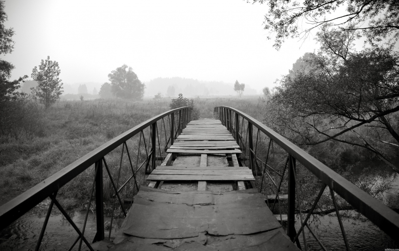 Originalwide black white bridge scenery wallpapers