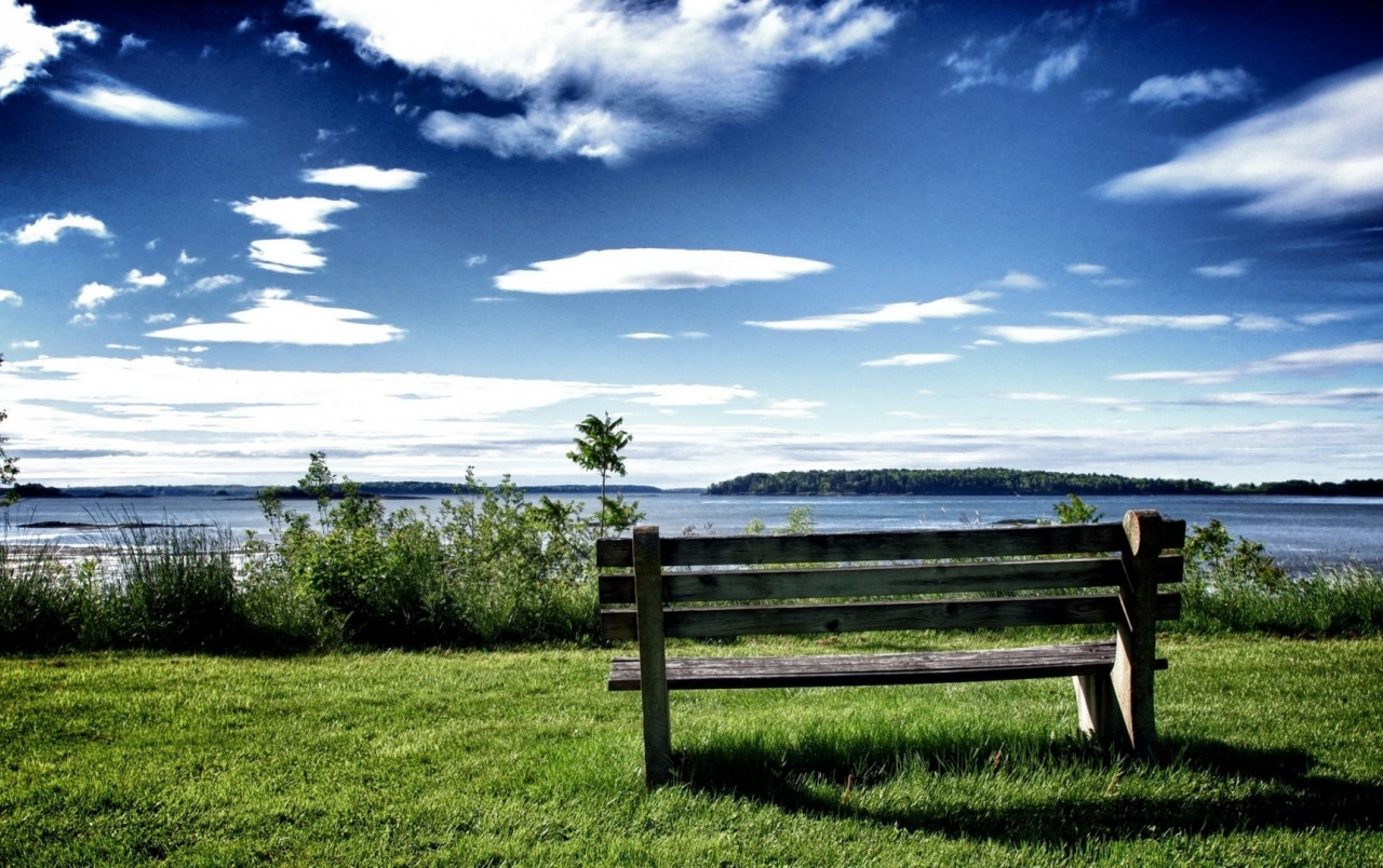 Chill Out Bench Grass & Ocean wallpapers