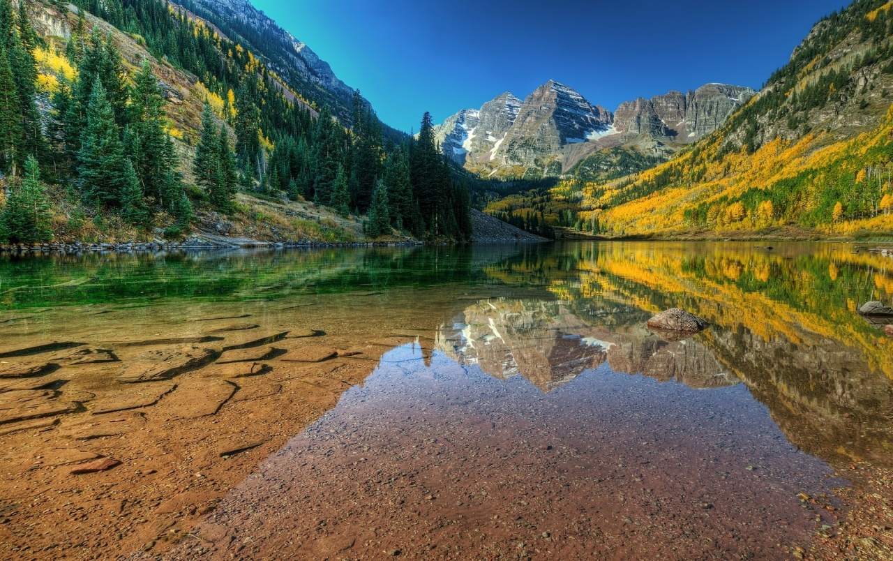 Mountains Forest Hills & Lake wallpapers