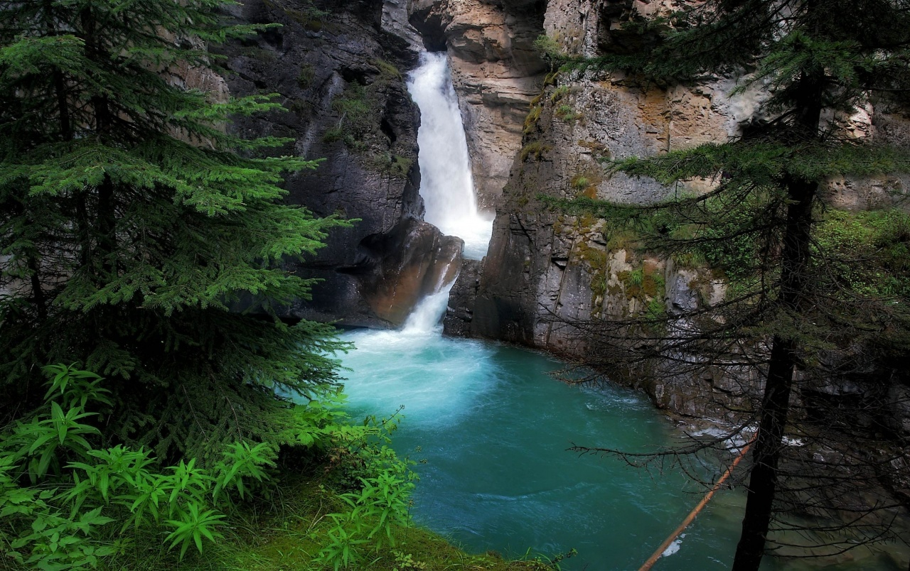 Pond Cliffs Waterfalls & Trees wallpapers