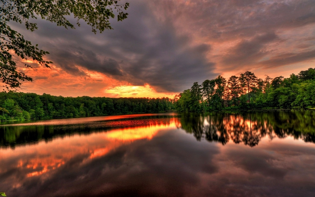 Sunset River Trees & Sky wallpapers