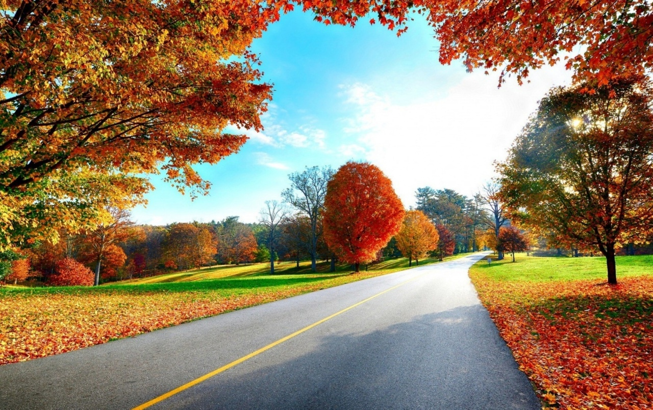 Lovely Autumn Scenic Road Wallpapers And Stock Photos