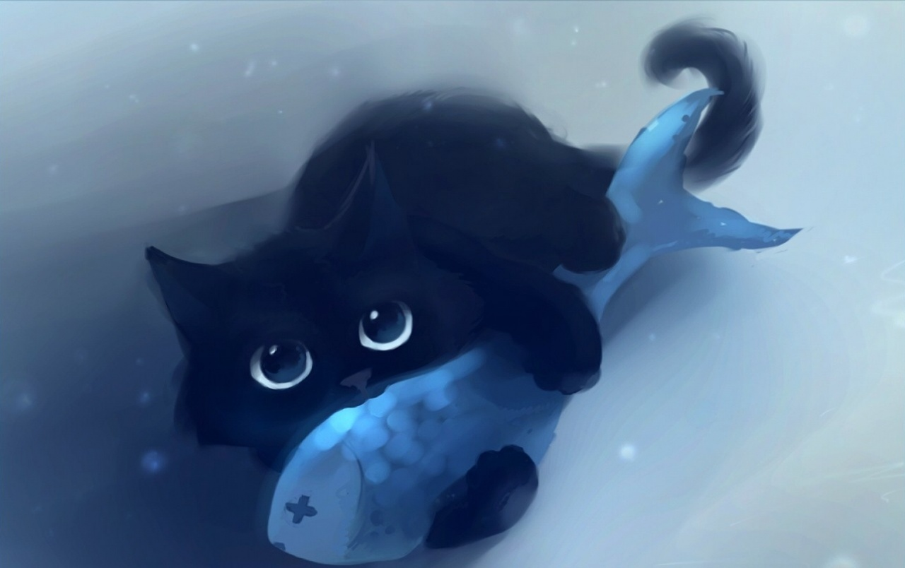Black Cat Blue Fish Wallpapers And Stock Photos