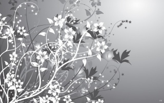 White gray flowers abstract wallpapers white gray flowers originalwide white gray flowers abstract wallpapers mightylinksfo