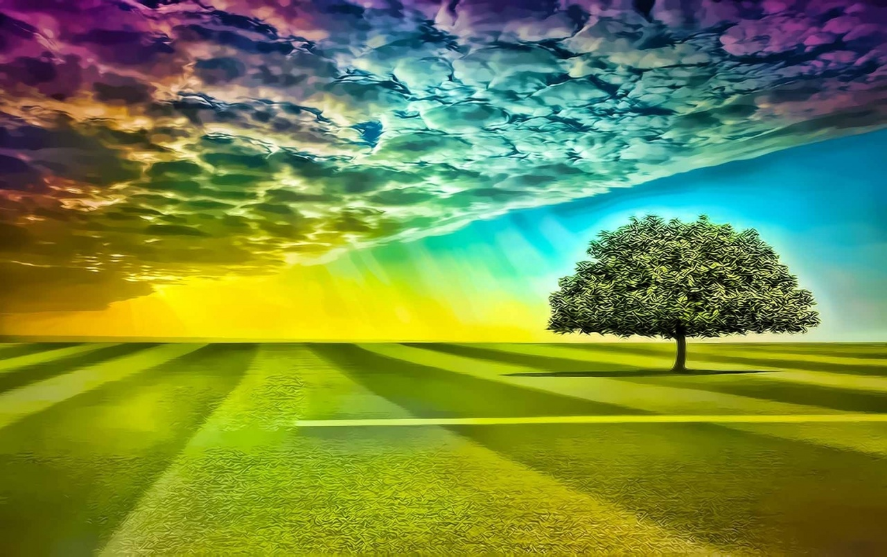Tree Rainbow Sky & Grass Field wallpapers