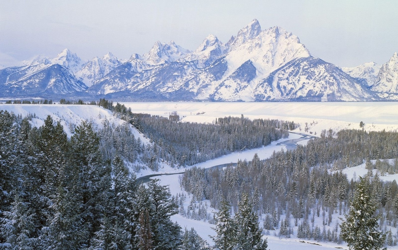 Winter Mountain Forest Wyoming wallpapers