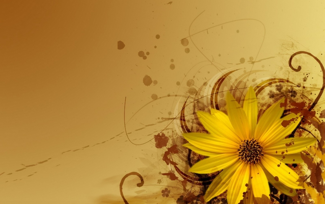 Yellow Flower Abstract Wallpapers Yellow Flower Abstract