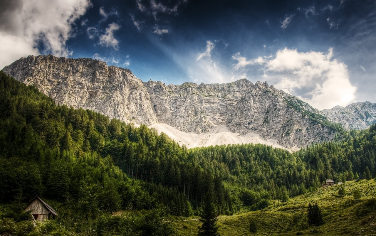 Deep Sky Mountains Forest wallpapers