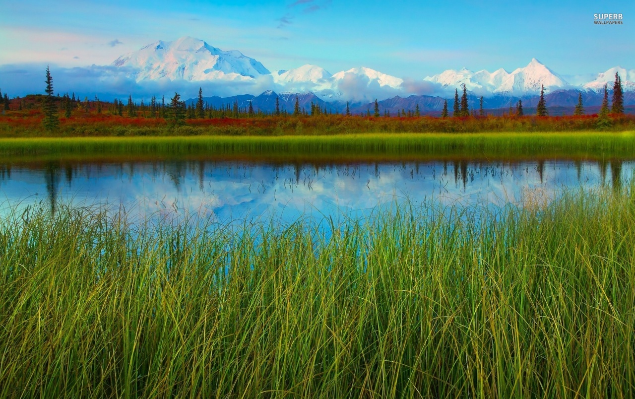 Denali National Park Alaska wallpapers