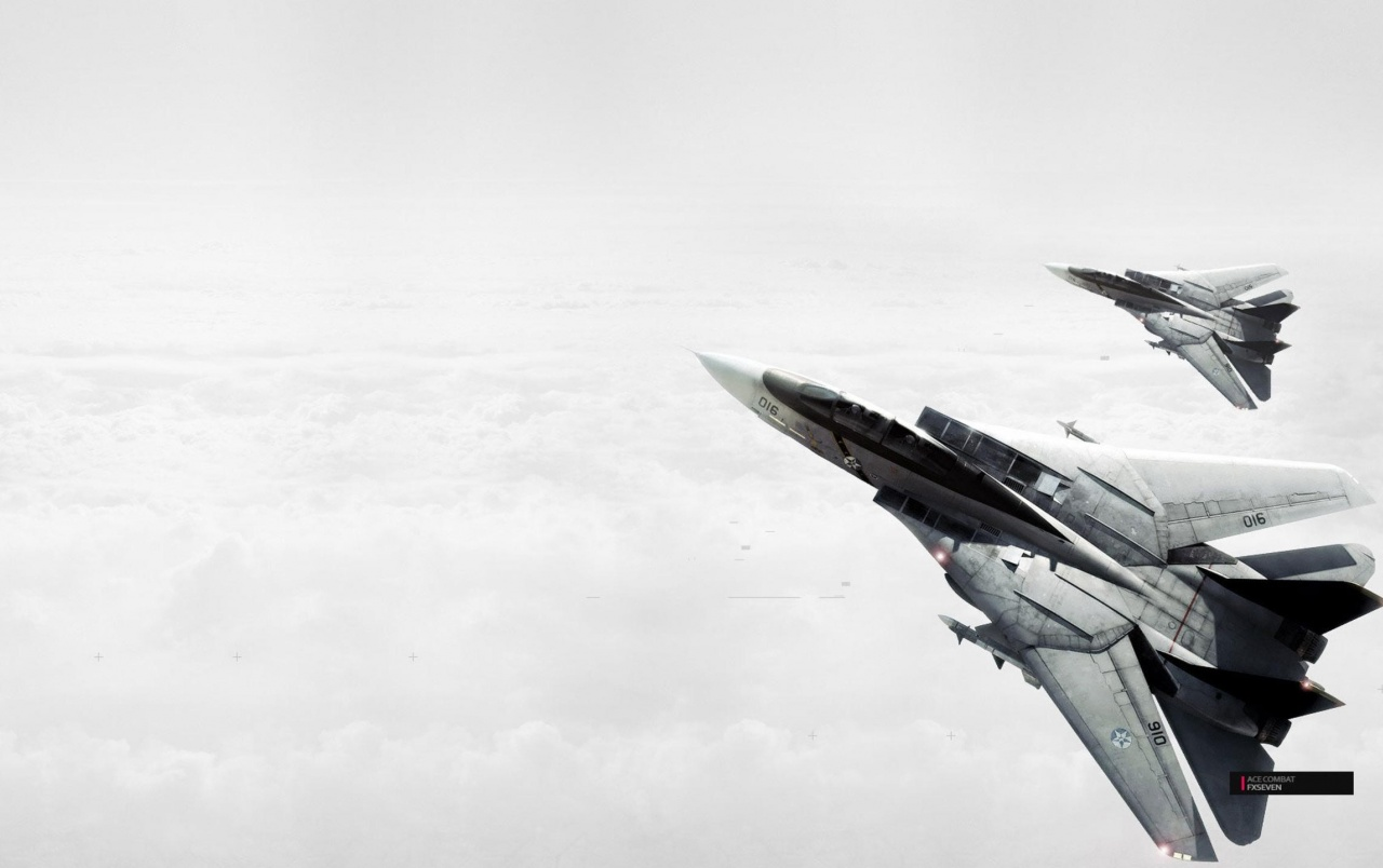Ace Combat Fighter Jets wallpapers
