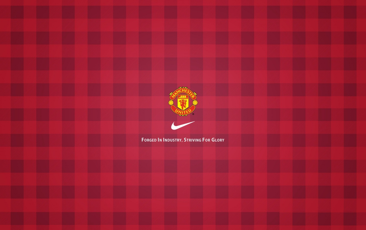 manchester united case study
