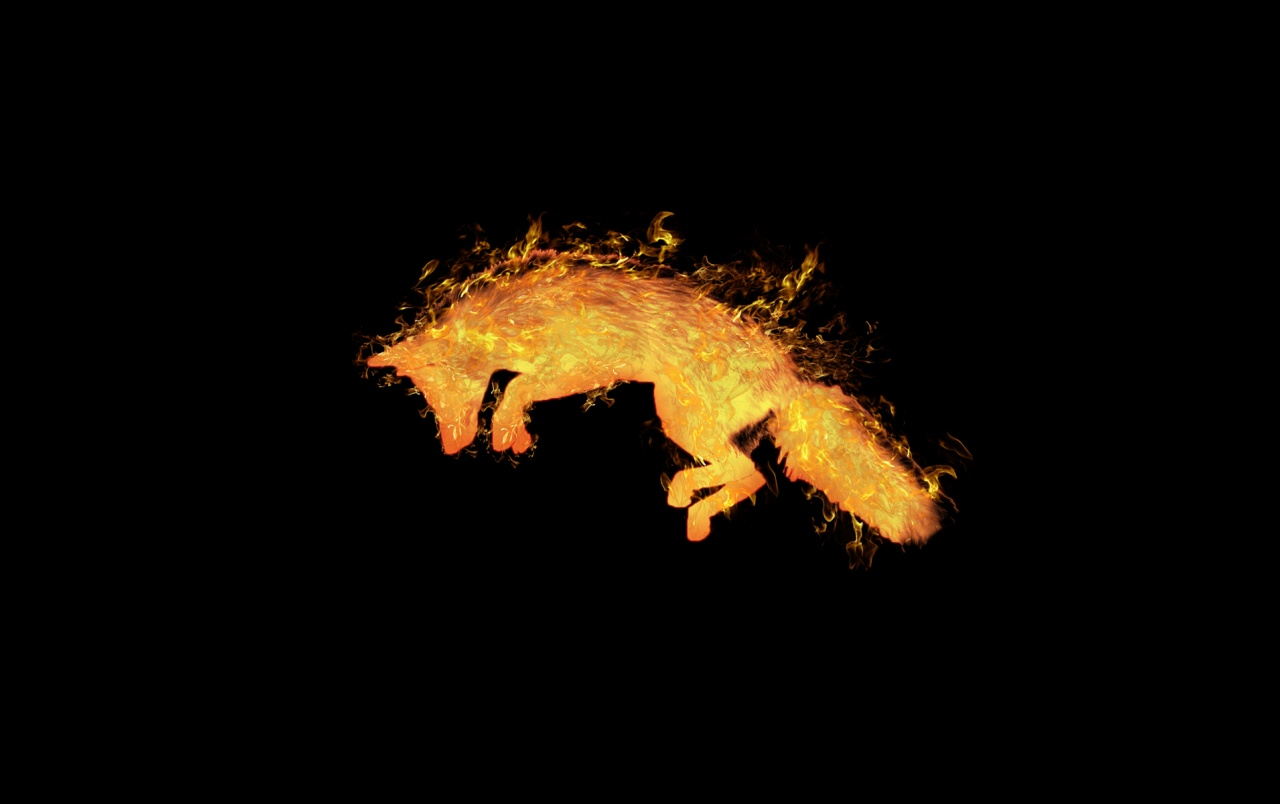 Minimalist Style Fire Fox Wallpapers Fire Fox Stock Photos
