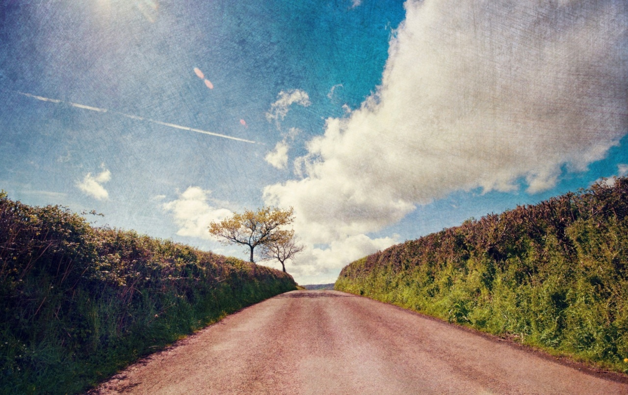 Hedge Road Tree Sky & Clouds wallpapers