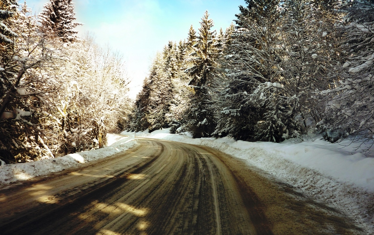 Snowy Forest & Dirt Road wallpapers