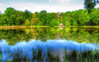 Teich in HDR wallpapers