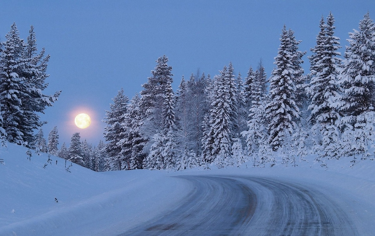 Snowy forest road moon night wallpapers snowy forest for Sfondi desktop inverno montagna
