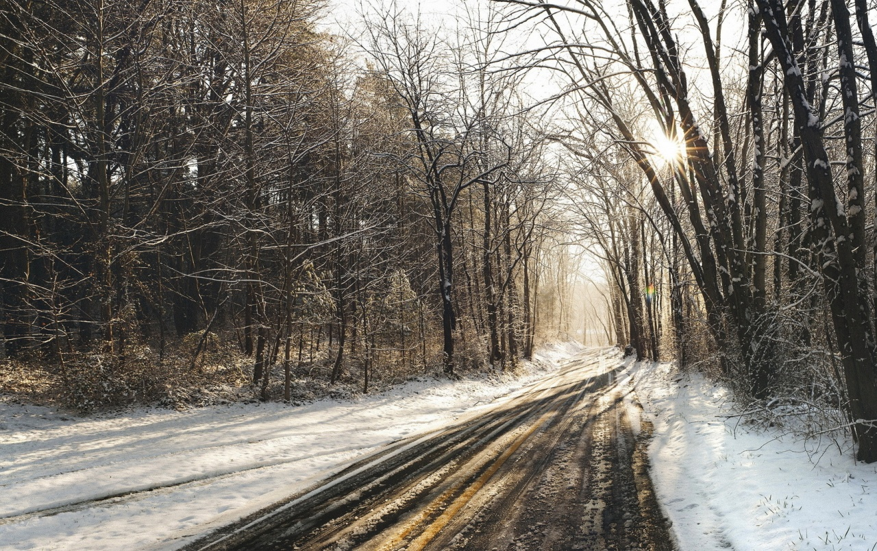 Forest Road Tracks & Snow wallpapers