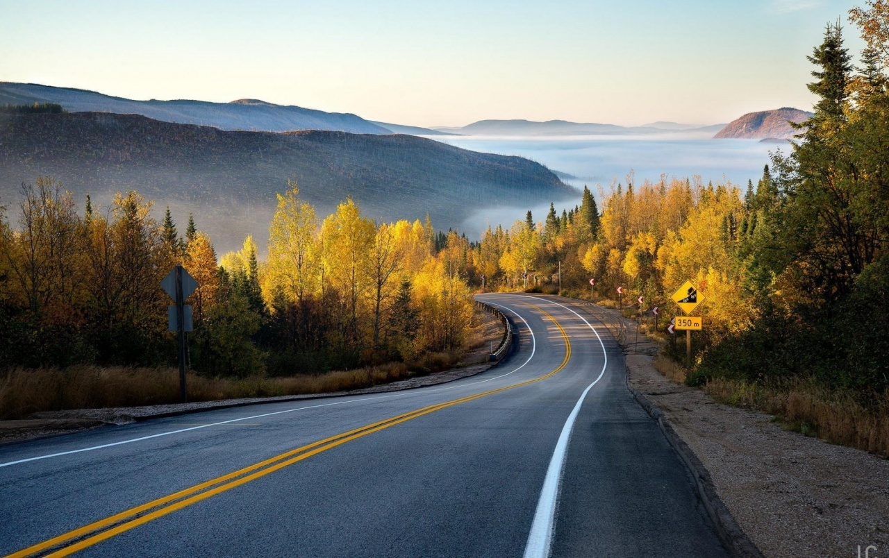 Autumn Forest Road Misty Wallpapers Autumn Forest Road Misty Stock Photos