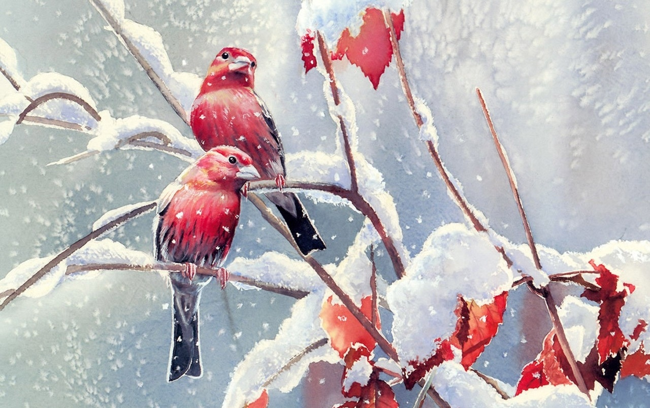 Red Birds Snow Branches Leaves wallpapers