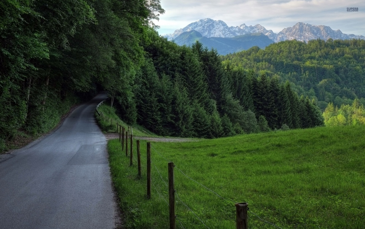 Forest road fences mountains wallpapers forest road fences originalwide forest road fences mountains wallpapers voltagebd Gallery