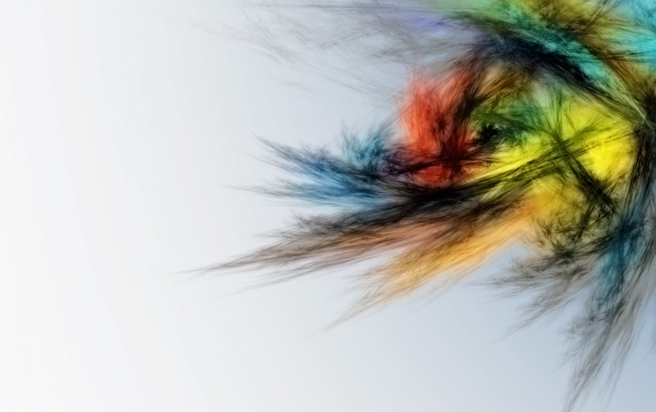 Feathers Multi Color Brush wallpapers