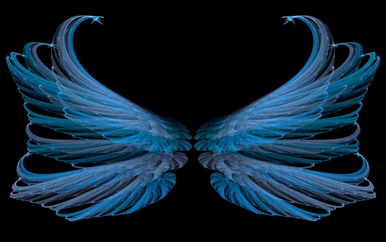 blue wings glamorous abstract wallpapers blue wings