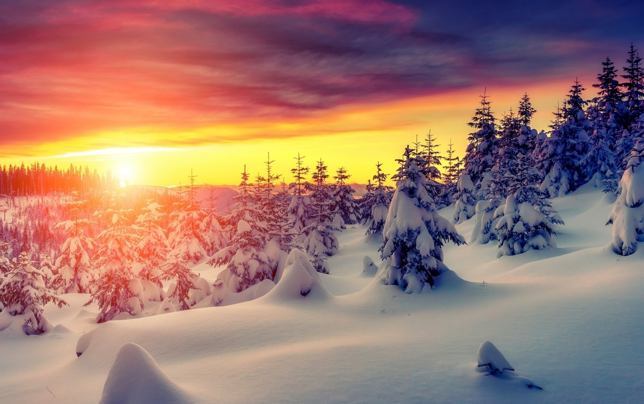 Gorgeous Winter Sunrise wallpapers