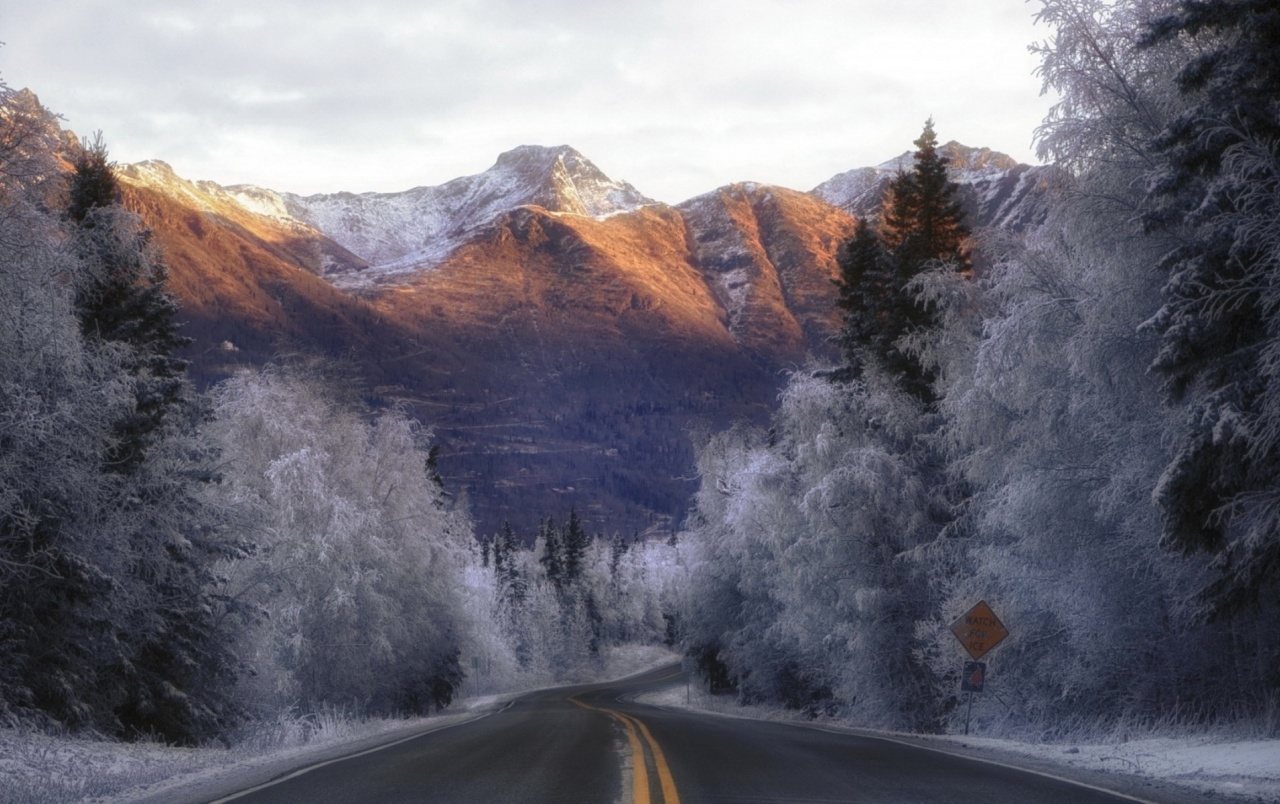 Winter Trees Road Sky Mountain wallpapers