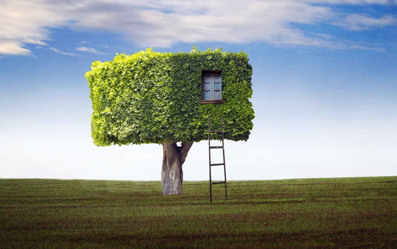 Tree house abstract wallpapers tree house abstract stock for Tree wallpaper for home