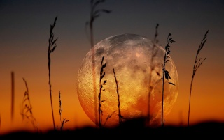 HD Beautiful Red Full Moon Wallpapers
