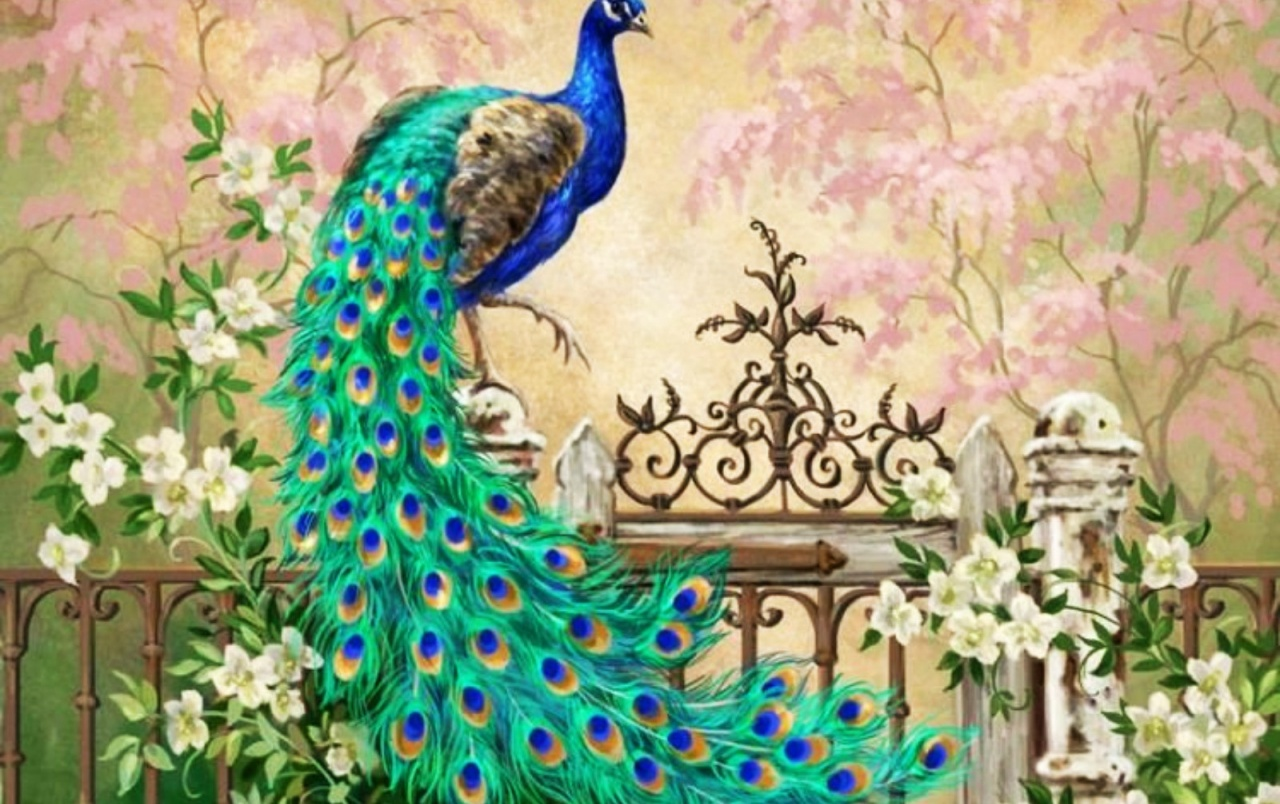 pretty peacock garden gate wallpapers | pretty peacock garden gate