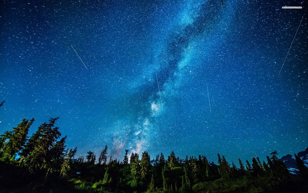 Originalwide Beautiful Starry Sky Forest Wallpapers