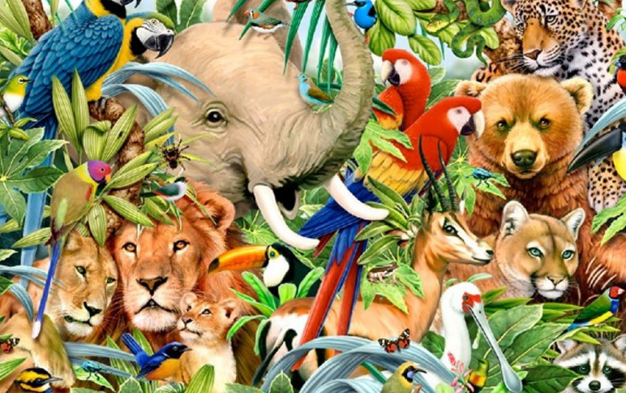 All Animals Wallpaper: Jungle Animals One Wallpapers